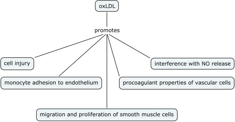 Volume One: Perspectives on Nitric Oxide in Disease Mechanisms (2/6)