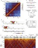 4C profiles validate the Hi-C Genome wide map