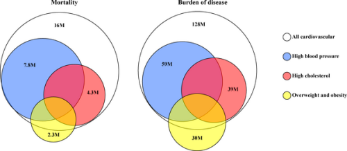 journal.pmed.0020133.g001  Global Mortality and Burden of Disease Attributable to Cardiovascular Diseases and Their Major Risk Factors for People 30 y of Age and Older