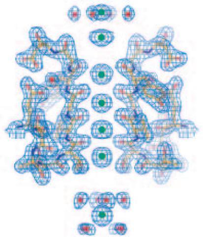 MacKinnon Fig 4. Electron density KcsA K channel