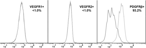 Figure 7. Analysis of VEGF and PDGF receptors expression on ADSC surface.