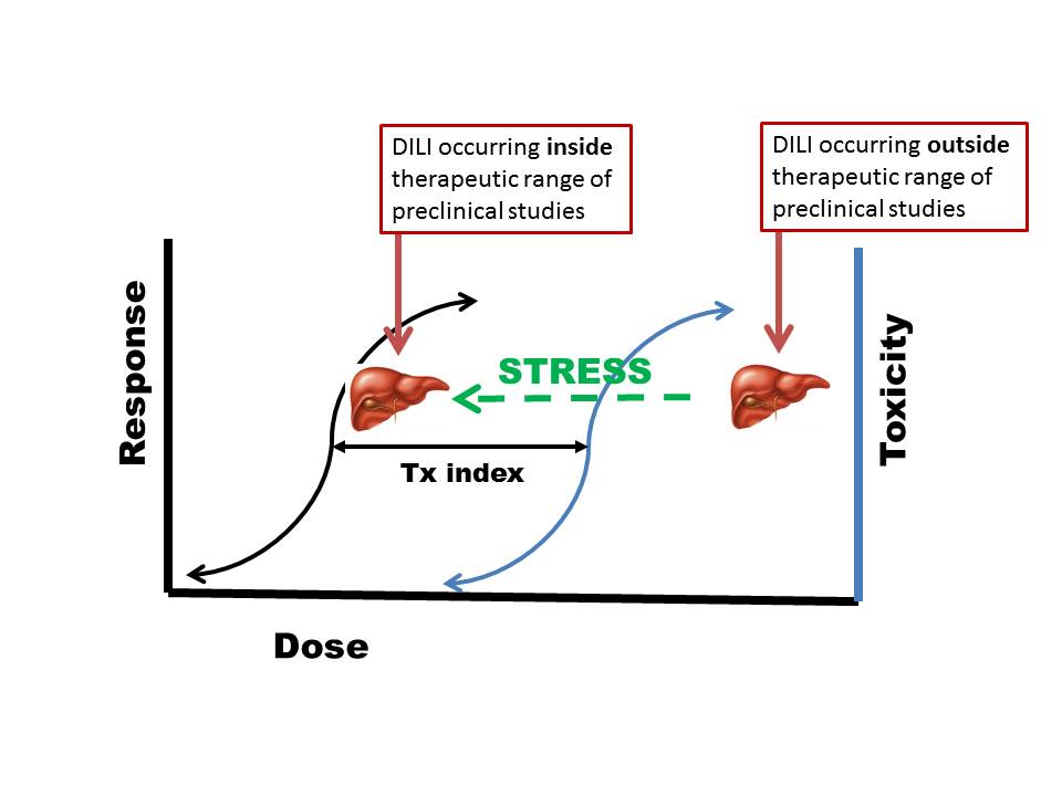 IDILdosestressrossmantheory