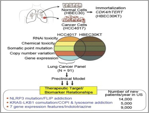 NSCLC expression subtype