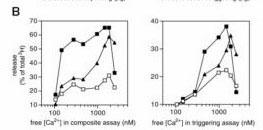 Fig. 2B. measurements of range of [Ca2+] total - average [Ca2+]free values_edited-1