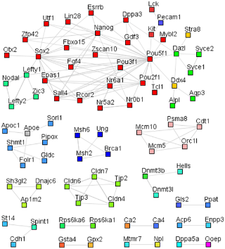 journal.pone.0012664.g003  Figure 3. Mouse protein-protein interaction networks of genes with higher expression levels in ESCs and iPSCs compared to somatic cells.