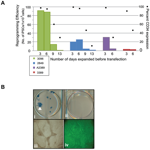 journal.pone.0027956.g005  Figure 5. The presence of CD34+ cells correlates with reprogramming efficie