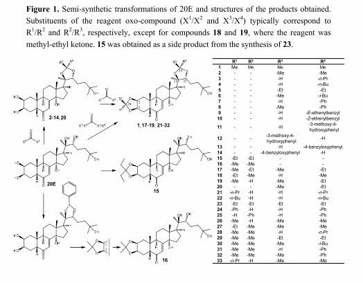 Ecdysteroid-Dioxolanes-as-MDR-Modulators-in Cancer | Leaders