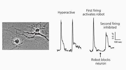 Robot blocks neuron