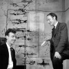 crick-watson-with-their-dna-model.