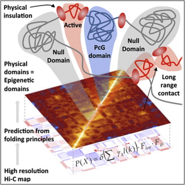 3-d-genome-map