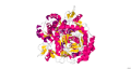 300px-Nitric_Oxide_Synthase