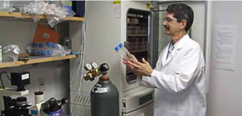 six separate tissue culture facilities