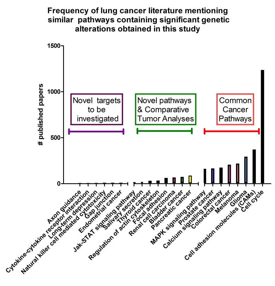 Multiple Lung Cancer Genomic Projects Suggest New Targets, Research Directions for Non-Small Cell Lung Cancer (2/3)
