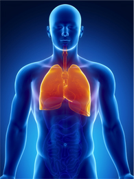 Multiple Lung Cancer Genomic Projects Suggest New Targets, Research Directions for Non-Small Cell Lung Cancer (1/3)