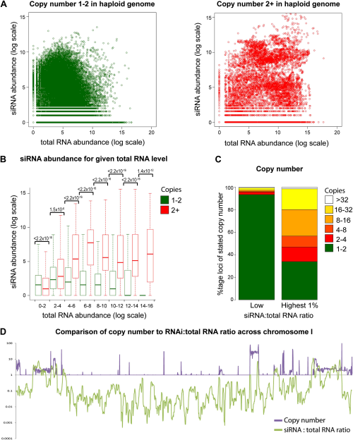 Multi-copy loci are preferentially targeted by RNA interference (RNAi).