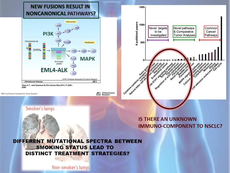 Multiple Lung Cancer Genomic Projects Suggest New Targets, Research Directions for Non-Small Cell Lung Cancer (3/3)