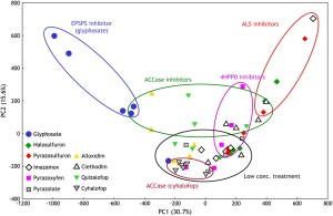Clarification of Pathway-Specific Inhibition by Fourier Transform Ion Cyclotron Resonance.Mass Spectrometry-Based Metabolic Phenotyping Studies F5.large