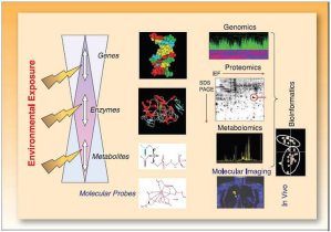 Dynamic Construct of the –Omics