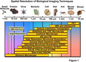 super resolution microscopy