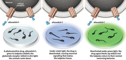 light operated drugs MO1