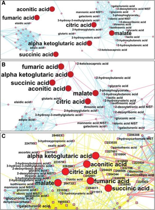 mapping metabolomic data using three different approaches