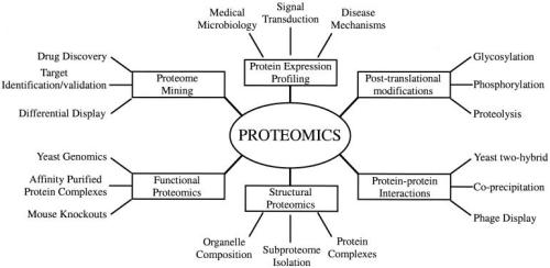 Types of proteomics and their applications to biology