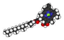 Chlorophyll-a-3D