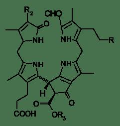 Nonfluorescentchlorophilcatabolites.svg