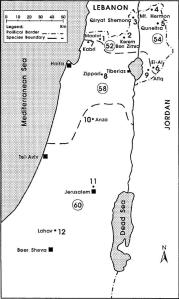 Geographic distribution in Israel of the four chromosomal species belonging to the S. ehrenbergi superspecies