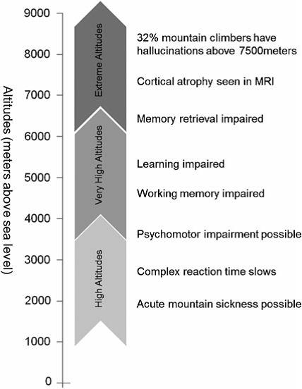 High altitude-related neurocognitive impairments with ascending altitudes
