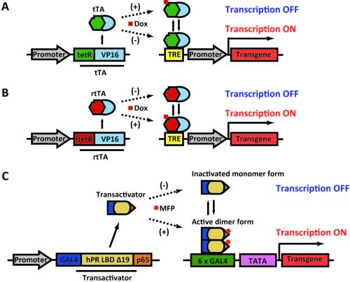 Diagrams of two regulatable gene expression systems.