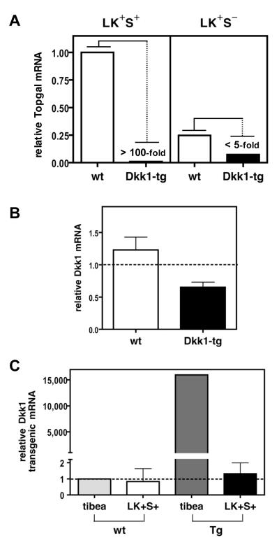 Assessment of canonical Wnt signal activity in HSC-containing populations of Dkk1-tg mice nihms-240191-f0002