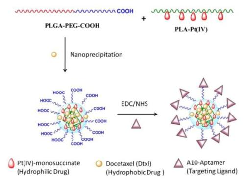 Pt(IV)-PLA drug conjugates were blended with PLGA-PEG and docetaxel to form nanoparticles  nihms-401532-f0010