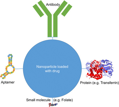 Four different strategies for active targeting of nanoparticle based drug delivery systems