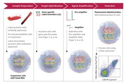 Prime Flow RNA assay_eBioscience_Fig21361229223 (1)