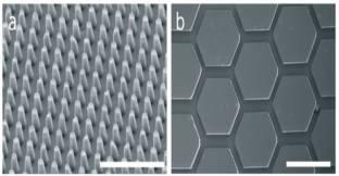 Microfluidic device-1