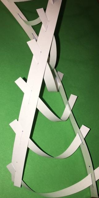 Paper DNA Photo