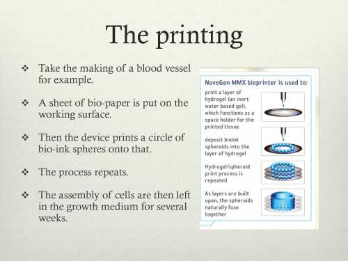 bioink presentation_10