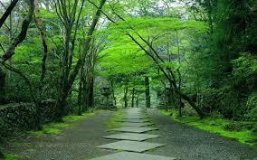 Kyoto-download