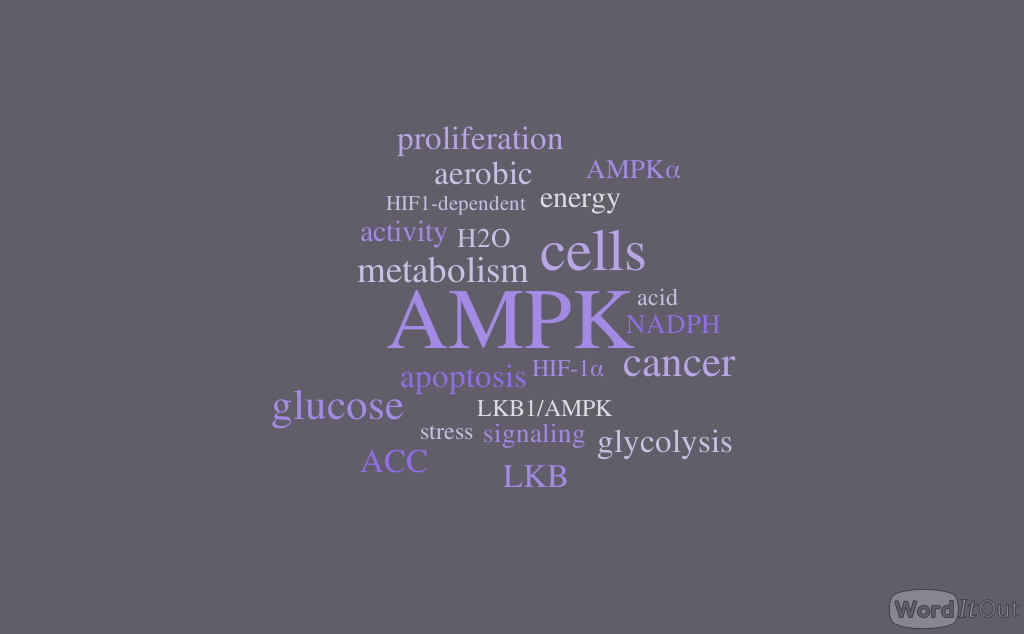 AMPK Is a Negative Regulator of the Warburg Effect and Suppresses Tumor Growth In Vivo