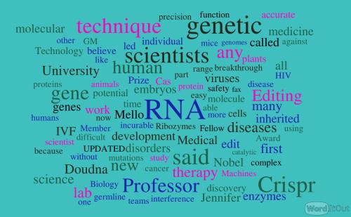 article-21.1.1-ribozymes-and-rna-machines-e28093-work-of-jennifer-a.-doudna