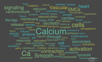 Article VIII Disruption of Calcium Homeostasis Cardiomyocytes and Vascular Smooth Muscle Cells The Cardiac and Cardiovascular Calcium Signaling Mechanism